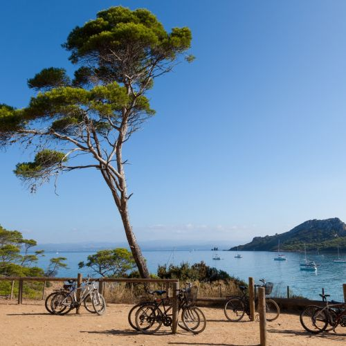 Bike rental to discover the island of Porquerolles in the south of France