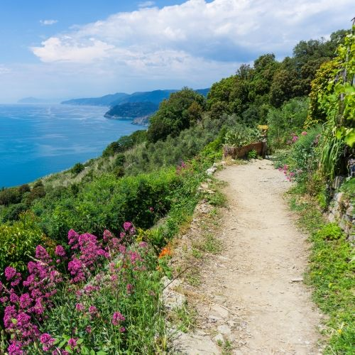 A hiking trail in the Cinque Terre