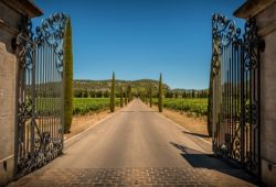 A forged iron gate at the entrance of a wine estate in Provence